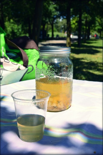 thé de chrysanthème glacé_1
